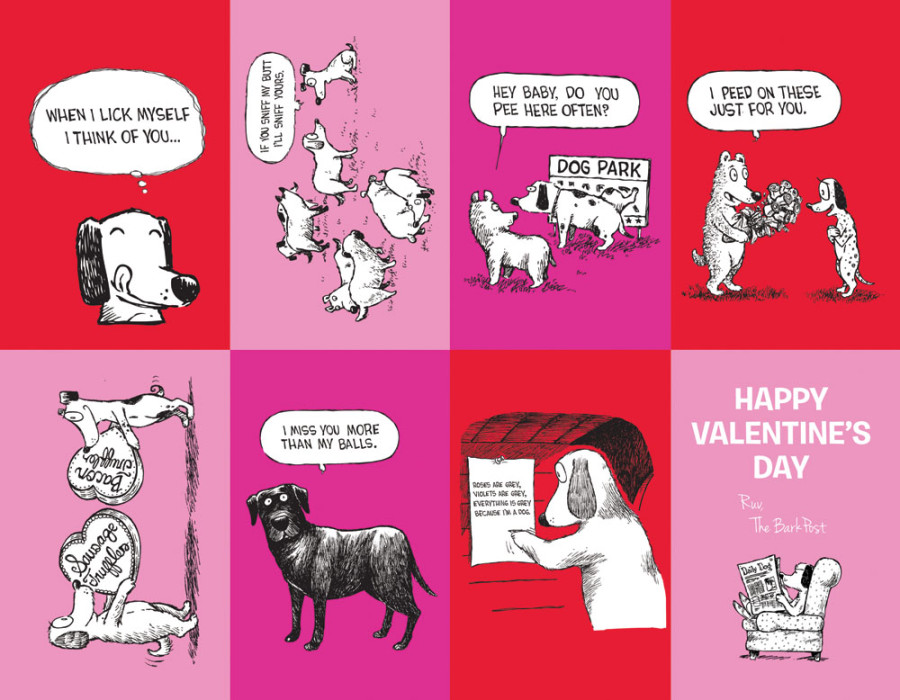 Dirty Valentine Cards for Your Dog to Paw Out This Year - BarkPost
