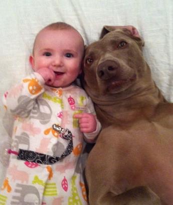 ellen pet pic babydog