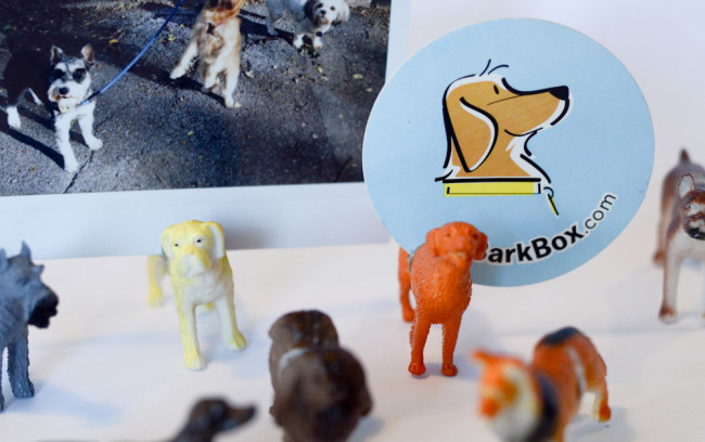 dog photo stands DIY