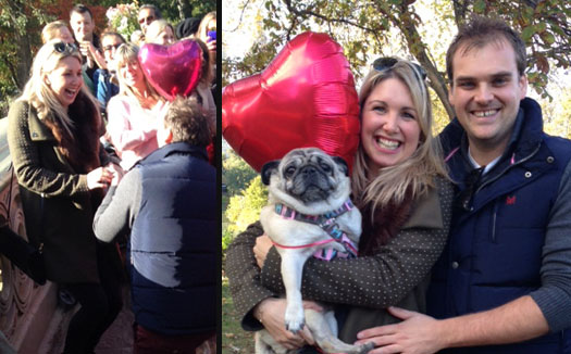 pug-proposal-featured-image