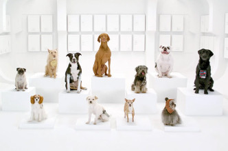 super-bowl-commercial-2012-volkswagen-dogs-star-wars-stormtroopers