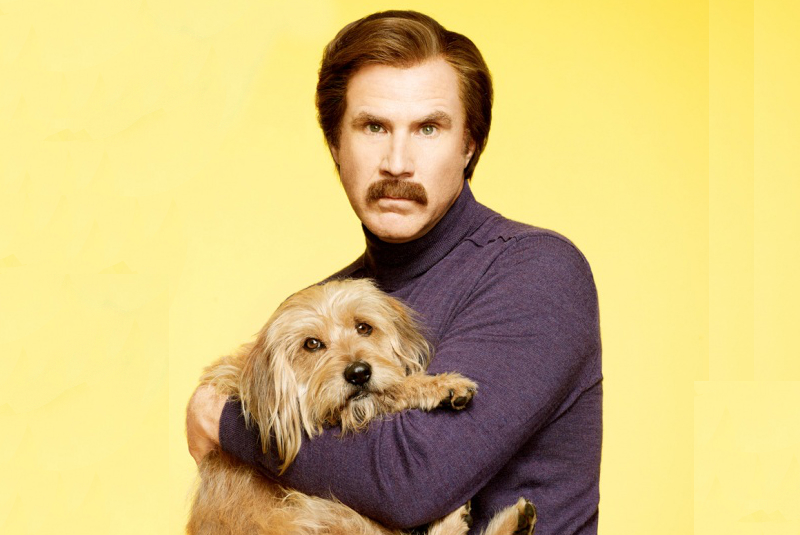 Dog From Anchorman