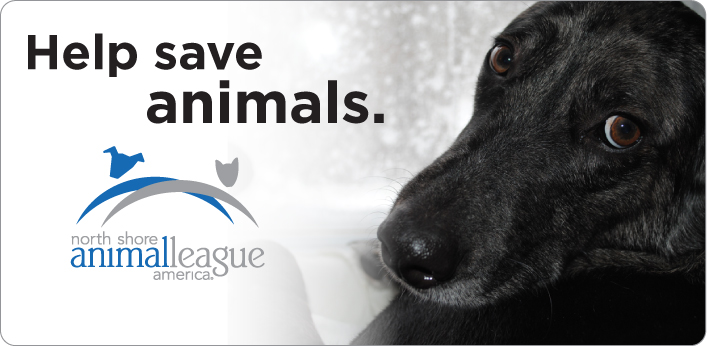 north-shore-animal-league-america