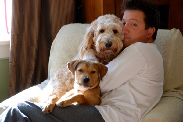 Stacey Todd Holt of Rocky, Lilly the Golden Doodle and Lucy