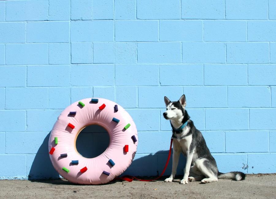 donutmiles3